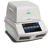 BIO RAD CFX Real time PCR